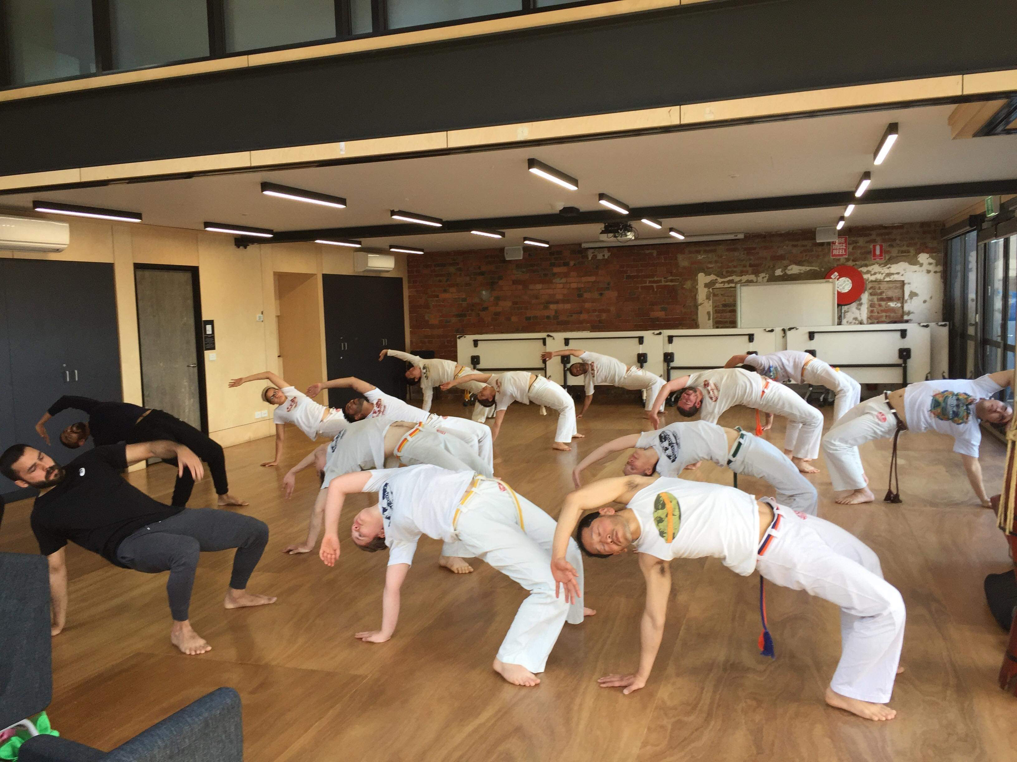 Capoeira Classes Richmond 2